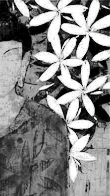 boudha fleurs