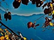Terre bleue ©Sandrine Delrieu 2012